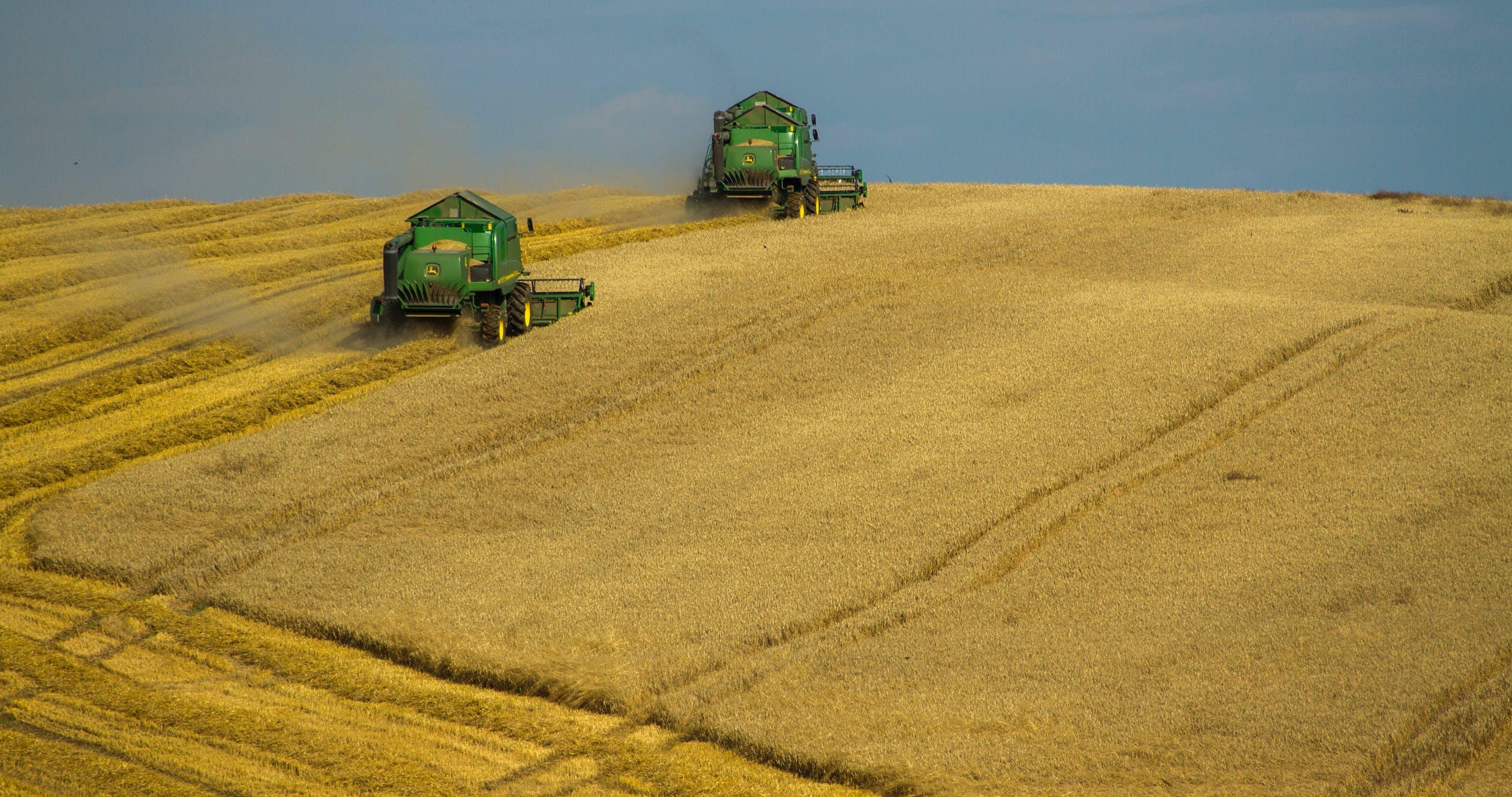 Czech Agriculture